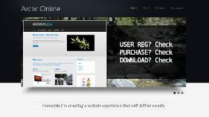 arcticonline.com