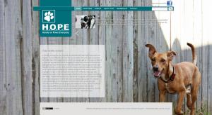 H.O.P.E Website